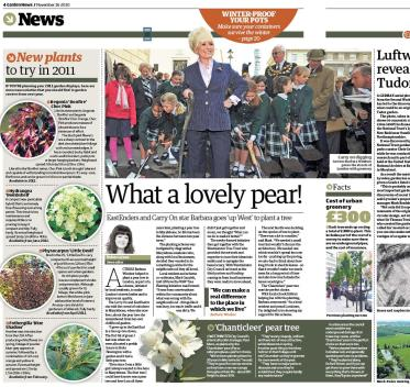 Garden News November 2010