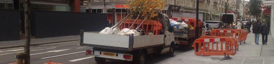 tree policy narrow
