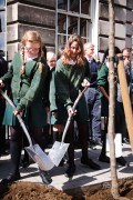 St Marylebone School plant a chanticleer pear tree which is one of 52 new trees now lining Devonshire Street.