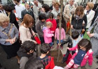 ICS kids help tread in the last of 49 new trees for New Cavendish Street