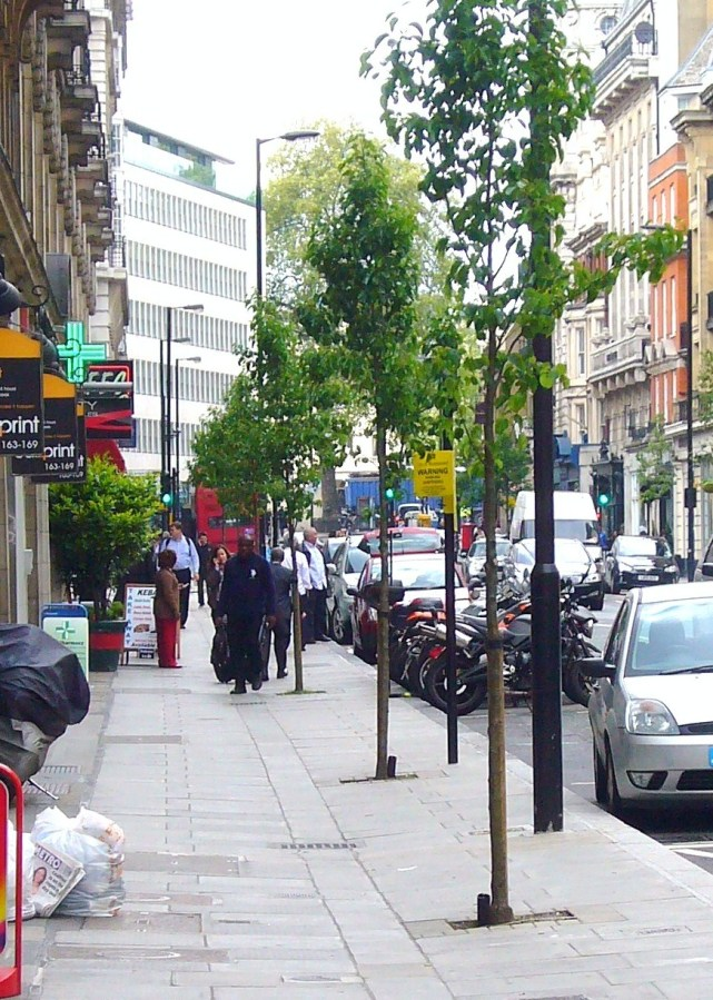 Great Portland Street after trees were planted