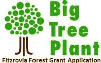 The Big Tree Plant Grant Application