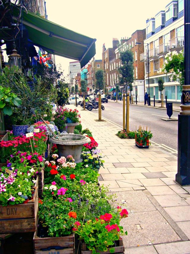 Crawford Street - West Marylebone - Trees Planted