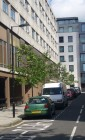 Tree line on Great Titchfield Street