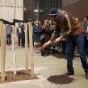 Tree Planting Cleveland Street in East Marylebone / Fitzrovia