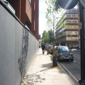 Planting Trees in Fitzrovia Forest in East Marylebone